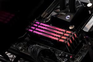 Predator RGB Memory II